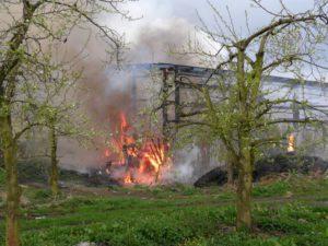 pol std brand einer scheune in neuenkirchen 300x225 - Brand einer Scheune in Neuenkirchen